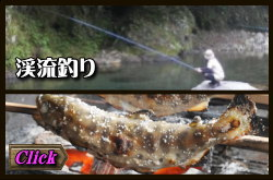 渓流釣り九州 熊本県